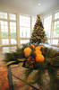 oranges in greenery with christmas tree in background
